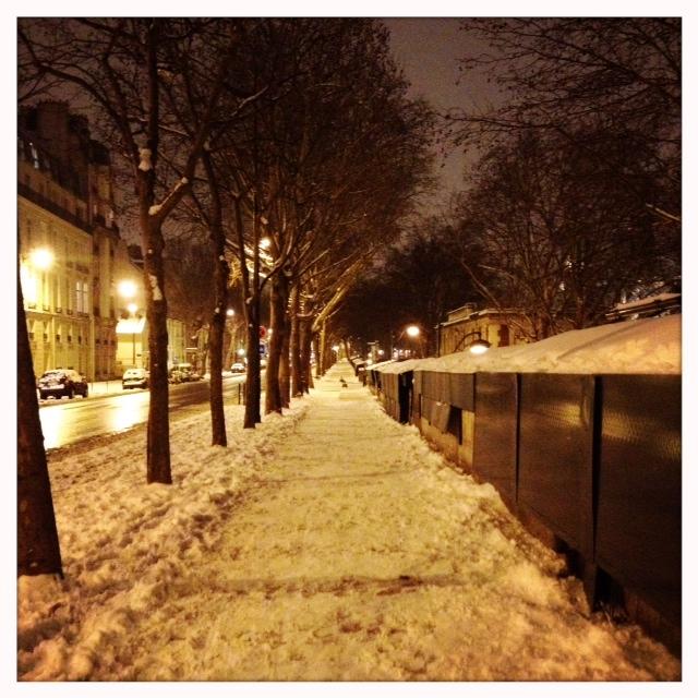 Photbouquiniste snow o (16)