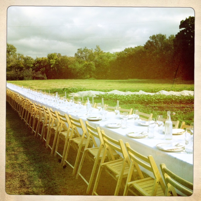 Outstanding in the Field - the table