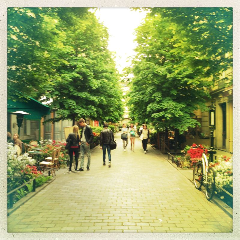Le Marais Allee in bloom