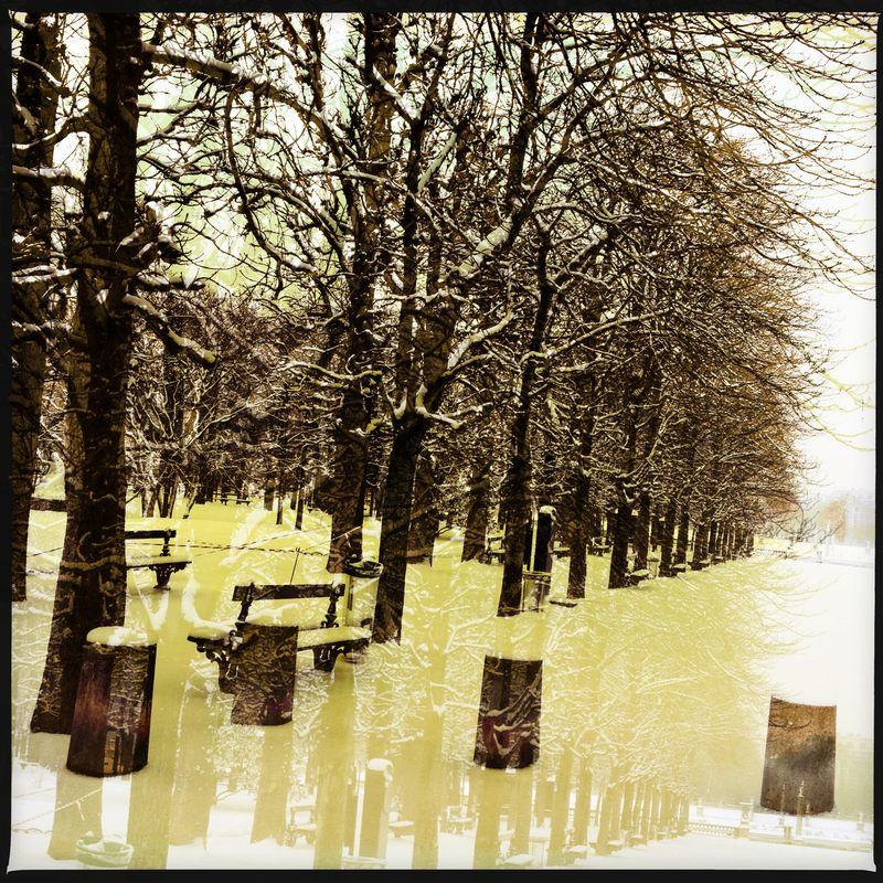 Snow Luxeumbourg Gardens
