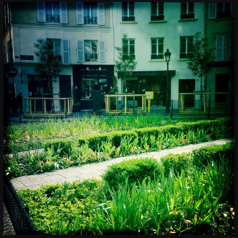 Les BAtignolles flowers in the place