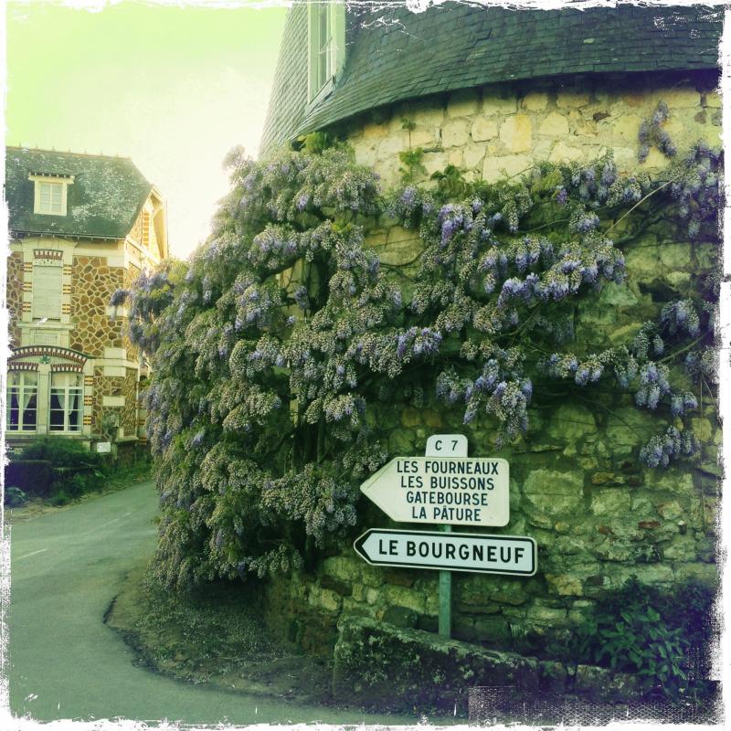 2014 april village of Thoureil near Angers